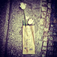 Flowers in dog poo bag lost on streets of Prague