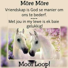 Good Morning Wishes, Good Morning Quotes, Lekker Dag, Afrikaanse Quotes, Angel Prayers, Goeie More, Beautiful Pictures, God, Sayings