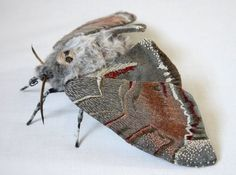 Fabric sculpture - Large Death-Head Moth textile art by YumiOkita on Etsy https://www.etsy.com/listing/177995513/fabric-sculpture-large-death-head-moth