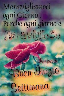 BUONGIORNO ....good morning - CheLaVitaContinua