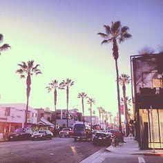Ecookie Venice Beach
