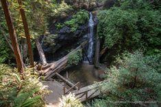 Russian River Gulch State Park Waterfall Trail - California Through My Lens Waterfall Trail, Beautiful Park, State Parks, Coastal, Lens, Hiking, California, River, Walks