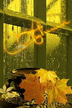 de The Effective Pictures We Offer You About GIF A quality picture can tell you many things. You can find the most beautiful pictures that can be presented to you about GIF Autumn Rain, Autumn Leaves, Winter Gif, Falling Gif, Beau Gif, Foto Gif, Autumn Coffee, Autumn Tea, Autumn Scenes