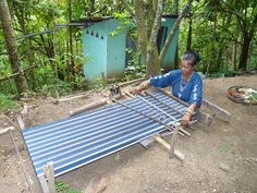 Ikat weaving in Watublapi, Flores (Indonesia) - (Flickr user: loeffle) -- I love this ground setup for the loom. Need to try this.