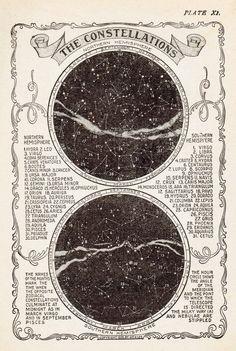 Vintage Star Chart, Constellation Map, Vintage Art Print, Star Map Vintage Print, Constellation Prin The Vintage Prints, Map Vintage, Vintage Star, Vintage London, Vintage Music, Vintage Ideas, Vintage Wall Art, Etsy Vintage, Astronomy Tattoo
