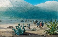 Euros botanizing in Ecuador, Alexander von Humboldt and Aimé Bonpland collecting plants at the foot of Chimborazo. Chateau De Malmaison, La Malmaison, Monuments, Alexander Von Humboldt, Marie, Explore, History, World, Nature