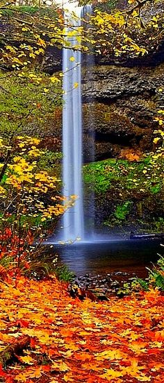 Beautiful South Falls In Autumn Silver State Park Oregon Jonesy Nature And Amazing World