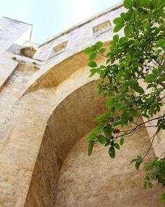 La TOUR DE LA BABOTTE La tour de la Babotte est un élément des vingt-cinq tours de l'enceinte fortifiée qui protégeait la ville de Montpellier à la fin du xiie siècle début du xiiie siècle. Haute de vingt-six mètres elle reste un des derniers vestiges avec la porte de la Blanquerie la Porte du Pila Saint Gély et la tour des Pins. . En 1739 l'Académie royale des sciences demande l'autorisation d'y établir un observatoire d'astronomie ce qui lui est accordé par le directeur général des…