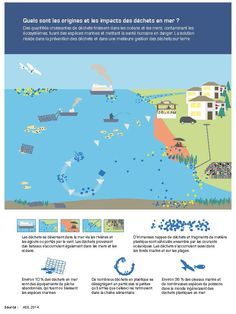 Increasing amounts of litter are ending up in the world's oceans and harming the health of ecosystems, killing animals and putting human health at risk. The solution lies in waste prevention and better waste management on land. Oceans Of The World, Our World, Endangered Sea Animals, Environment Agency, Plastic Pollution, Save The Planet, Climate Change, Education, Cop21