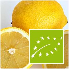 Limoni di sicilia Biologici 8 kg prodotti tipici siciliani scirocco sicily Bio
