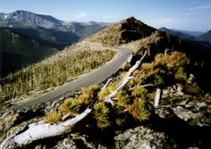 The highest paved road in the US, the high point stop offers some truly spectacular views of the surrounding valleys and peaks.