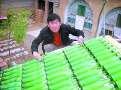 Chinese farmer Ma Yanjun came up with a novel, inexpensive way to provide hot water for members of his family: laying 66 bottles, connected by hose pipes, on a board covered with aluminum foil. Placed on a rooftop and pointed north to collect the maximum amount of sunlight, this incredible DIY solution really does work.