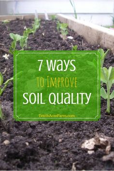 7 Ways to Improve Soil Quality: Many of us inherit gardens and yards that consist of lifeless or hardpan soil unfit for growing edibles. Good quality soil is essential for an abundant garden and reducing the incidence of pests. While there are many ways to improve soil quality for the purpose of growing food, these are the seven methods that have been the most successful for me.