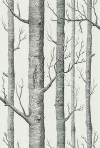 Woods 69/12147 Tapetti.