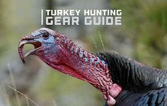 ScoutLook's Ultimate Turkey Hunting Gear Guide Best Turkey, Turkey Time, Wild Turkey, Turkey Hunting Vest, Hunting Camo, Hunting Guide, Turkey Calling, Hunting Clothes, Vests
