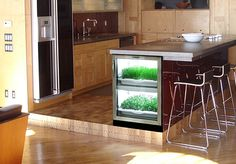 Your own personal indoor garden. Contact Avenue Appliance in Edmonton, Alberta (#yeg) for an Urban Cultivator product information & pricing!
