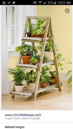 Plant Shelf