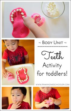 Teeth Activity for Toddlers! Months Old) Learning about teeth for toddlers Human Body Activities, Art Activities For Toddlers, Senior Activities, Health Activities, Creative Activities, Hands On Activities, Infant Activities, Preschool Activities, Halloween Activities