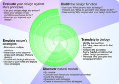 Biomimicry Design Spiral developed by Carl Hastrich in cooperation with the Biomimicry Guild. A biomimicry perspective to the contemporary design process.  Courtesy of Rosenfeld Media