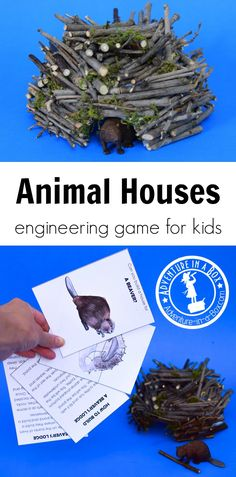 Animal Houses: Engineering Game for Kids