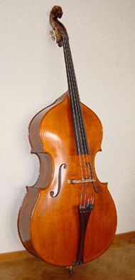 Double Bass (also known as the Contrabass). This instrument is the largest and the lowest member of the string family.