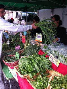 Hollywood Farmers Market Great greens are sold here.. She is one of my Favorite vendors