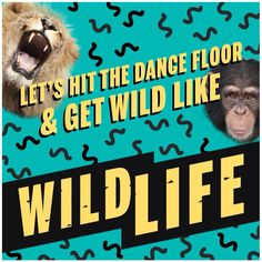 Wild Life by Jack and Jack