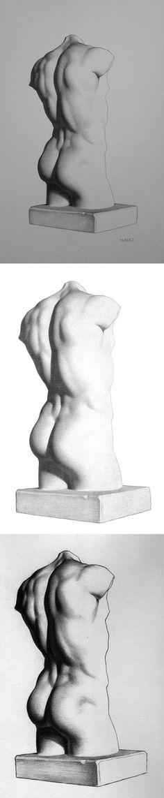 back muscles, plaster back