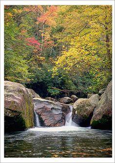 Midnight Hole - Metal Print - Great Smoky Mountains Pictures - Fine Art Photography - William Britten - Linda Kess - Re-Wilding Great Smoky Mountains, Beautiful Waterfalls, Beautiful Landscapes, Mountain Waterfall, Nature Landscape, Landscape Photos, Mountain Pictures, Smoky Mountain National Park, Amazing Nature