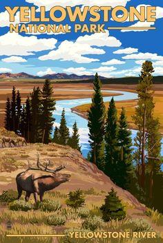 Yellowstone National Park, Wyoming - Yellowstone River & Elk - Lantern Press Artwork (12x18 Gallery Quality Metal Art), Multi
