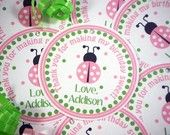 Ladybug FAVOR TAGS - Pretty in Pink Ladybug - Birthday Party - Baby Shower