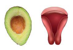 Ha hiszed, ha nem, minden növény azt a szervet gyógyítja, amelyikre hasonlít - EZ SZUPER JÓ