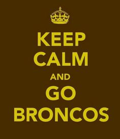 Western Michigan University Broncos    gosh im so glad my colors next year are yellow and POOP brown. go broncos!!