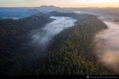 Aerial view of Tasmania's Tarkine wilderness