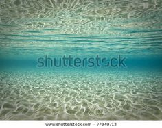 Beautiful underwater scene by Elpis Ioannidis, via ShutterStock Water Images, Underwater Photos, Royalty Free Stock Photos, Waves, Scene, Book, Beach, Illustration, Pictures