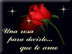 Industria del amor - Rosas Rojas