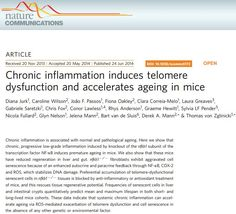 Communication Articles, Environmental Factors, Oxidative Stress, Transcription, Aging Process, Genetics, Omega