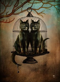 Naughty Kitties / Christian Schloe