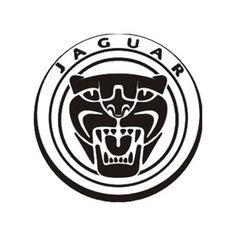86 best project jaguar images jaguar fluid ounce animals beautiful 1950 Cadillac Coupe jaguar logo