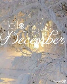 Hello December ☃ : QUOTATION – Image : Quotes Of the day – Description Hello December Sharing is Power – Don't forget to share this quote !
