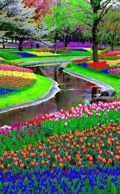 """Keukenhof Park, Lisse, The Netherlands Also called the """"Garden of Europe,"""" Keukenhof Park (which covers 80 acres) is planted with over 7 million flower bulbs every year. Though the park is only open from March to May, it has been around since 1949 and remains a major attraction for tourists and dignitaries alike."""