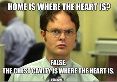 false. love Dwight.