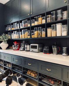 Kitchen Pantry Design, Kitchen Pantry Cabinets, Home Decor Kitchen, Kitchen Interior, New Kitchen, Home Kitchens, Kitchen Island, Tall Pantry Cabinet, Funny Kitchen