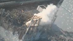 Fukushima (still) poses no risk!? - http://www.wnd.com/2014/01/atomic-lie-fukushima-danger-under-control/#VEZHOiSASzMXsC8D.99 - http://www.bloomberg.com/news/2013-03-10/fukushima-radiation-proves-less-deadly-than-feared.html -  http://www.pbs.org/newshour/bb/environment/july-dec13/fukushima_07-26.html