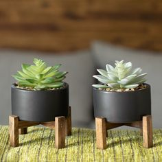 Artificial Succulent in Pot - Bepflanzung Artificial Succulents, Faux Succulents, Planting Succulents, Succulent Plants, Succulent Containers, Succulent Care, Succulent Terrarium, Container Flowers, Container Plants