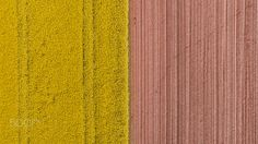Colors and textures -