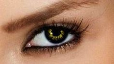 Black Wolf FX Contact Lenses - Eye Ink FX