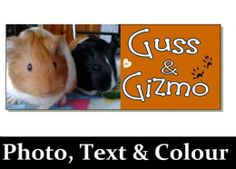 PHOTO & Personalised Guinea Pig cavy name Sign plaque Hutch door run cage garden