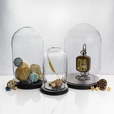 Gl Domes Bell Jars With Wooden Bases Candy Buffet The Jar
