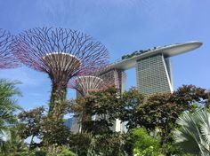 Cosmic garden #Singapur #marinabay
